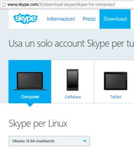 Skype sistem